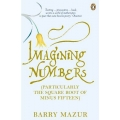 Imagining Numbers